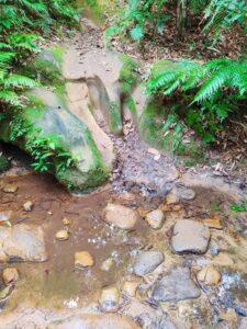 カンビレーの滝トレッキングコース