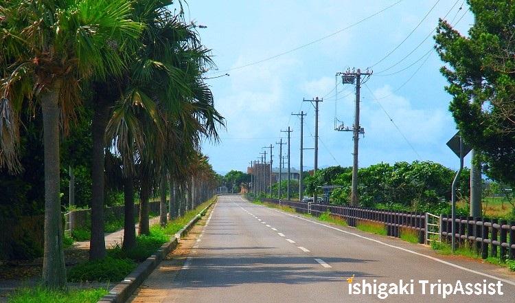 黒島 100選の道