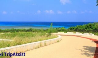 ニシ浜に続く道